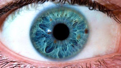 iridologia e ciarlatani